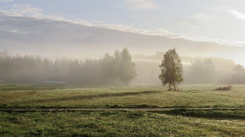 Herbst Ayurveda Geist Körper